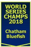 2018 WS Champions